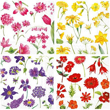Load image into Gallery viewer, Cocktail Napkins, Set of 4, Red, Yellow, Pink, Purple Floral Designs