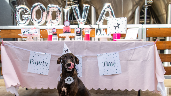 A Gotcha Day Party for the books!