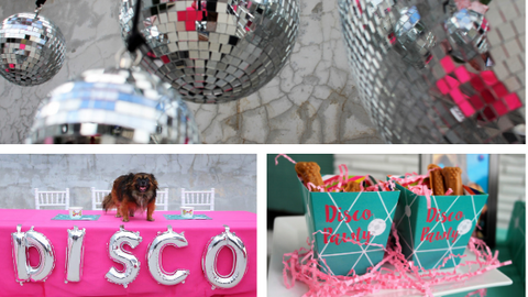 Disco Theme Dog Birthday Party