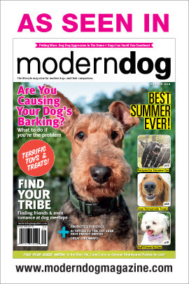 Dog Birthday Party Modern Dog Magazine