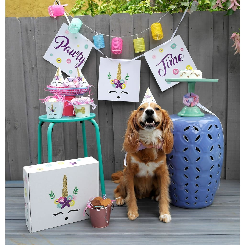 Unicorn Dog Birthday Party Box Accessories And Decor Kit Pawty In A Box