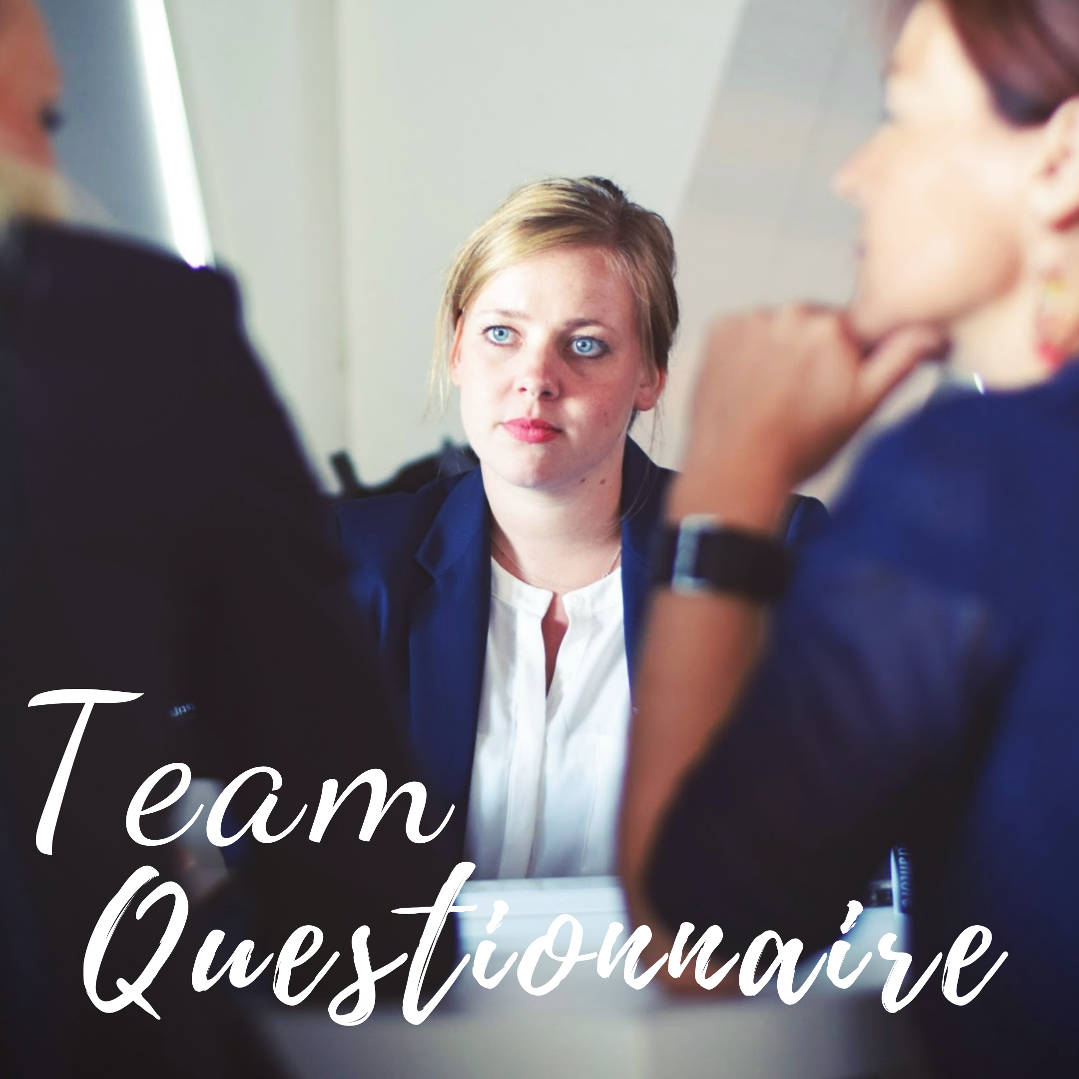 Team Questionnaire PDF