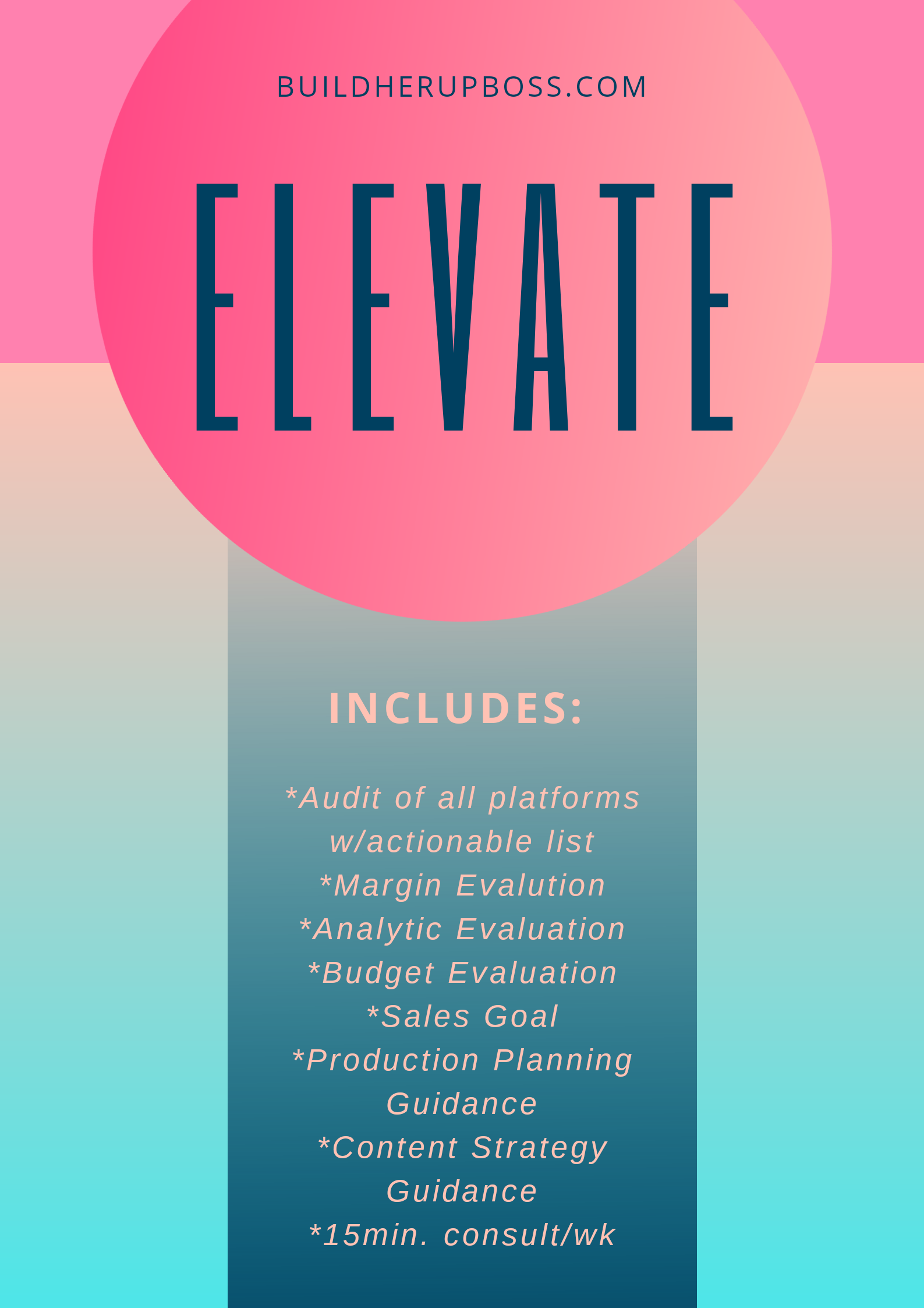 Elevate - Full Business Analysis