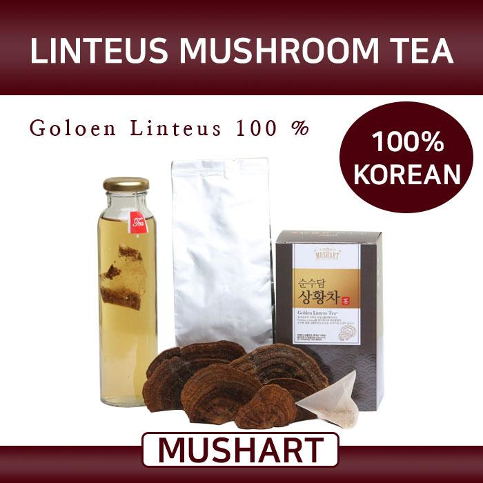 Mush Art Linteus Mushroom Tea, Mushroom, Mushroom Tea, Tea, Korean Tea, Healthy drink, Healthy Tea