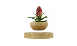 Levitating Planter by Puro Projects