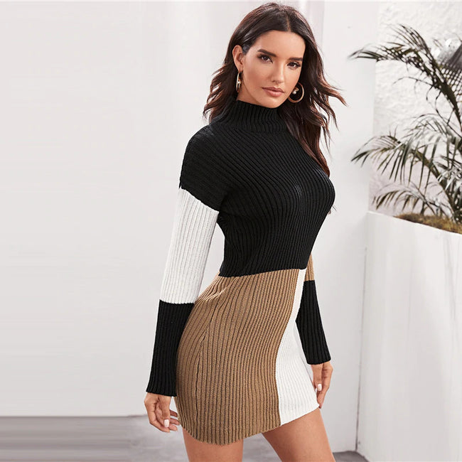 Colorblock High Neck Bodycon Sweater Dress