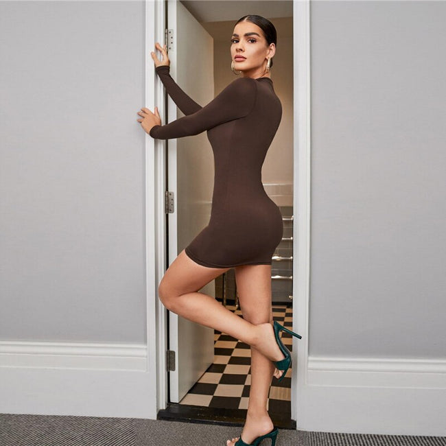 Chocolate Brown Mock Neck Solid Bodycon Dress