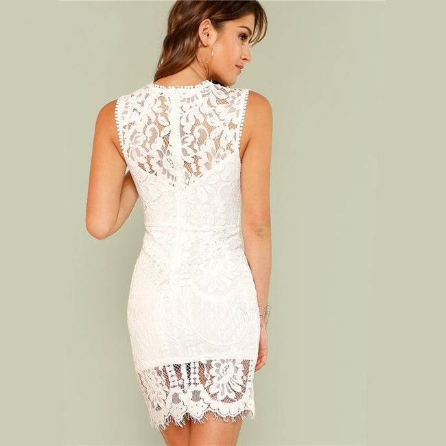 Scalloped Lace Bodycon Party Dress