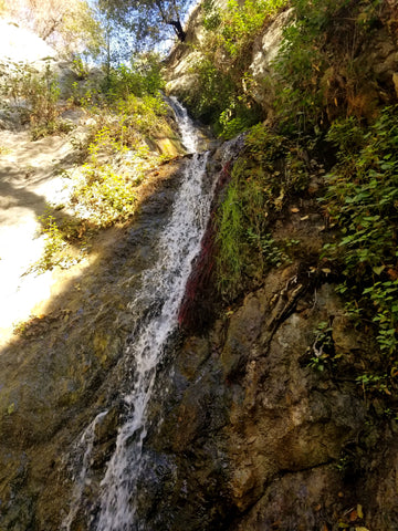 Monrovia Canyon Falls Hike (Beginner)