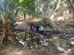 Michael Antonovich Trail