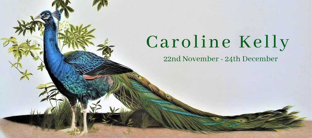 Caroline Kelly: 22nd November - 24th December 2018