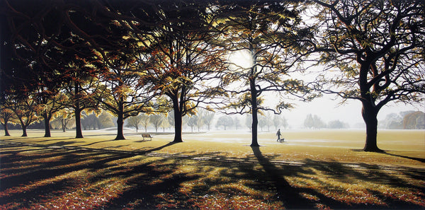 Autumn Morning, Hagley Park