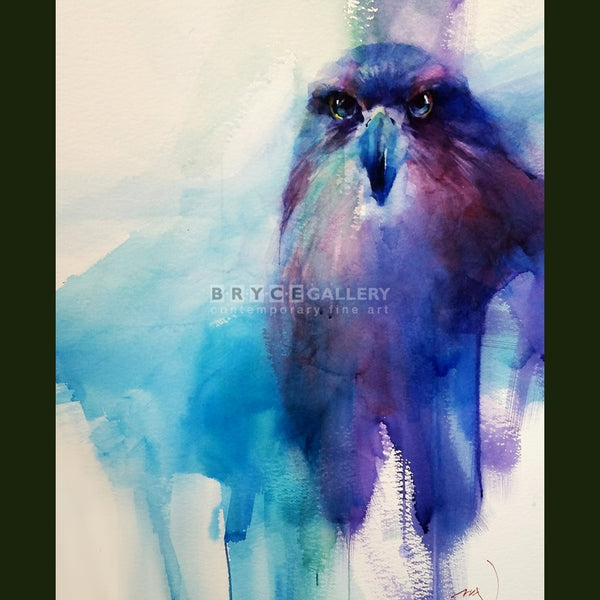New Zealand Falcon Paintings
