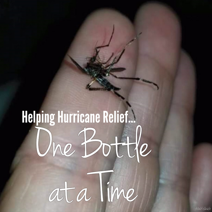 Free Bottle of Bug Be Gone for Hurricane Recovery
