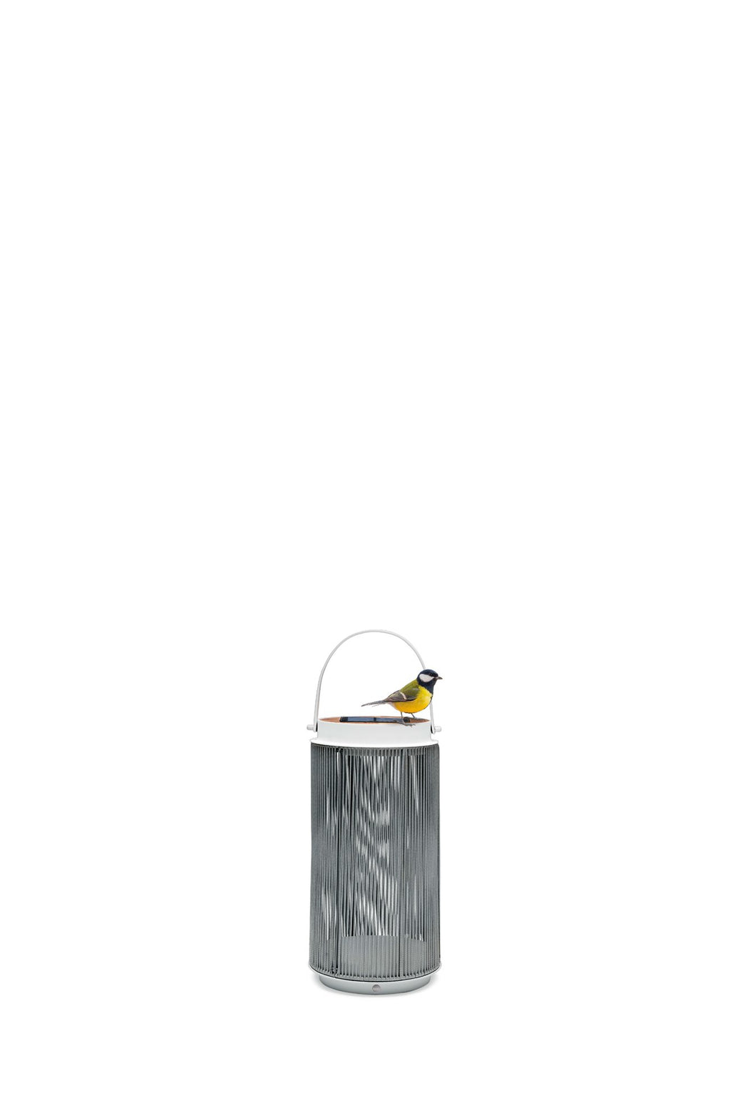 Outdoor | Solar LED Lantern | Fay - Small
