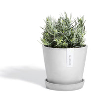 Amsterdam Planter Pot