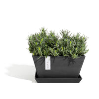 Berlin Square Planter Pot