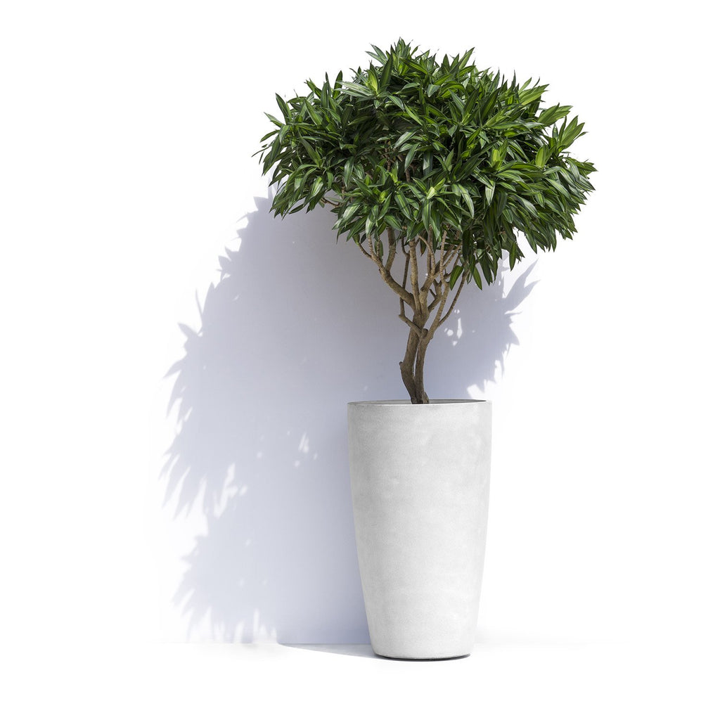 Helsinki High Round Planter Pot by Cosapots