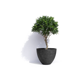 London Round Planter Pot