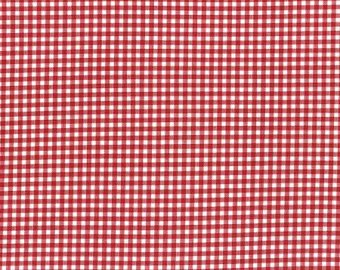 Durham cotton fabric by Lecien 31475-30 Red Gingham