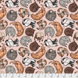 Cat Nap Cat Fabric, Fabric by the Yard, Freespirit Cat Tales Collection