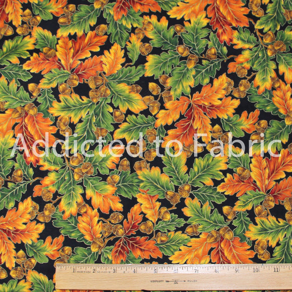 VIP Cranston, Autumn/Fall Fabric by the Yard, by the Half Yard, Oak Leaves and Acorns on Black