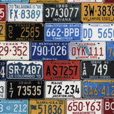 License Plates Fabric by the Yard or Half Yard, Take the Scenic Route, Cars