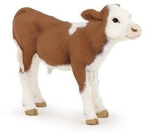 A brown and white calf from...
