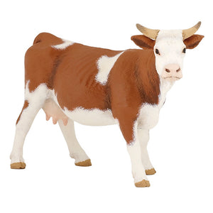 A brown and white Simmental...
