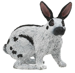 A white rabbit from the Pap...
