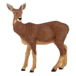 A (female) doe deer from th...