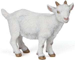 A white baby goat from the ...