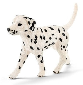 Dalmatians are famous for...