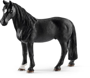 The Tennessee Walking Horse...