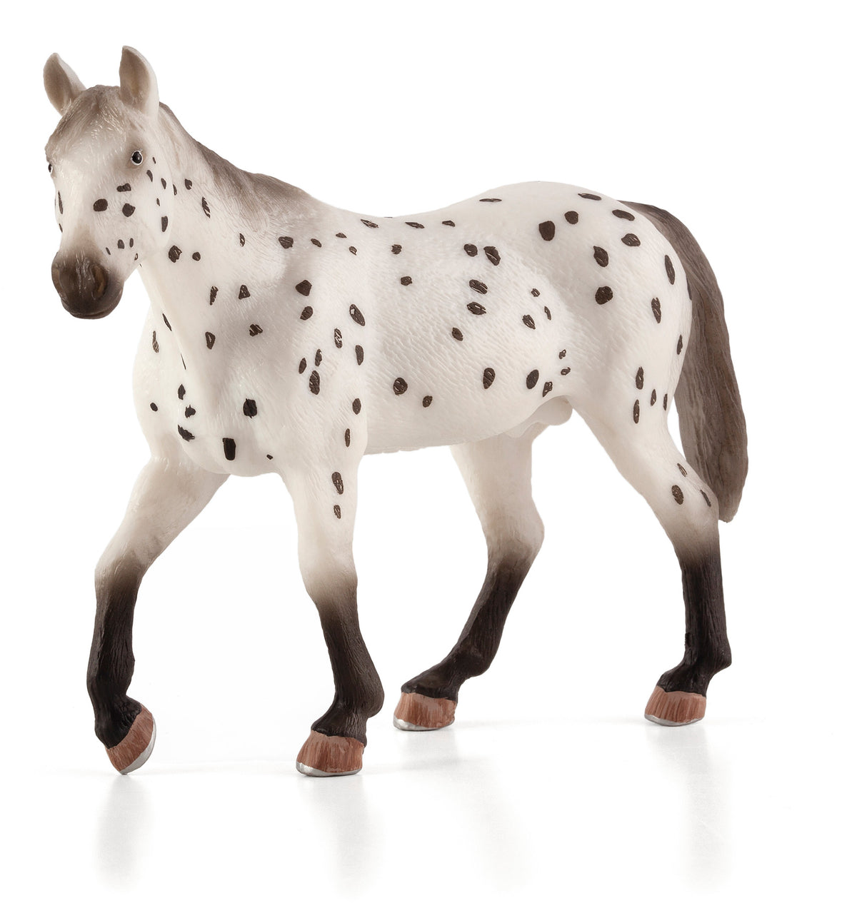 Appaloosa Stallion Animal Planet 387108