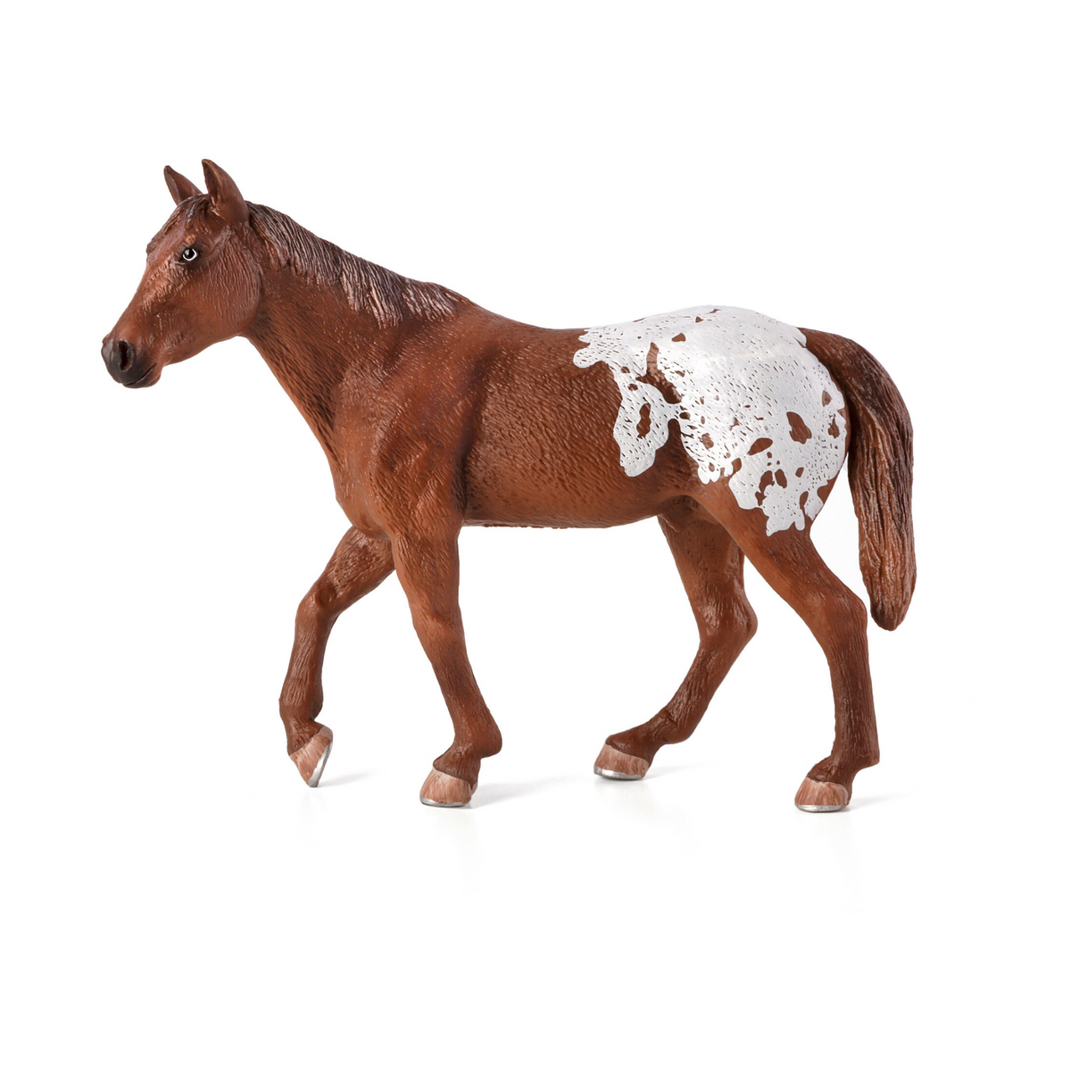 Chestnut Appaloosa Stallion Animal Planet 387150