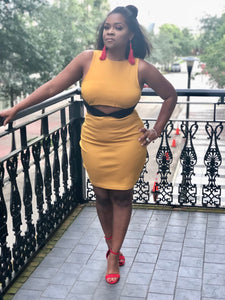 Mustard & Black, Sleeveless Crop Top Dress