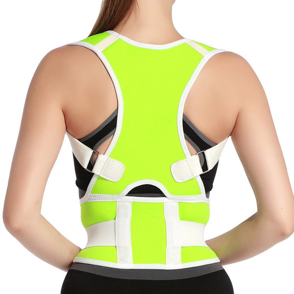 Waist Back Support Belt