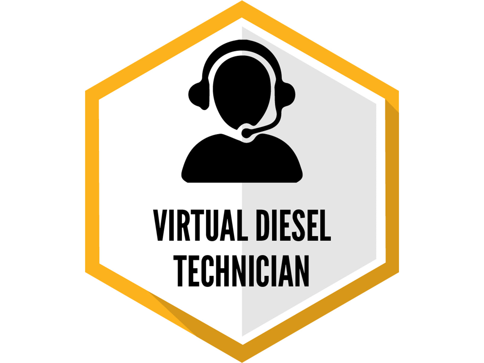 Virtual Diesel Technician Service and Software