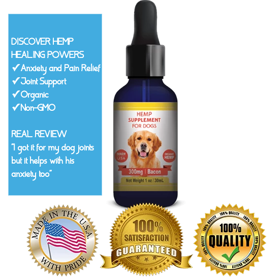 Hemp Oil for Dogs Pain Relief for Dogs with Arthritis