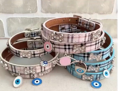 Dog collars with evil eye charms