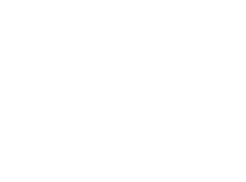 Champagne Mary Puissant