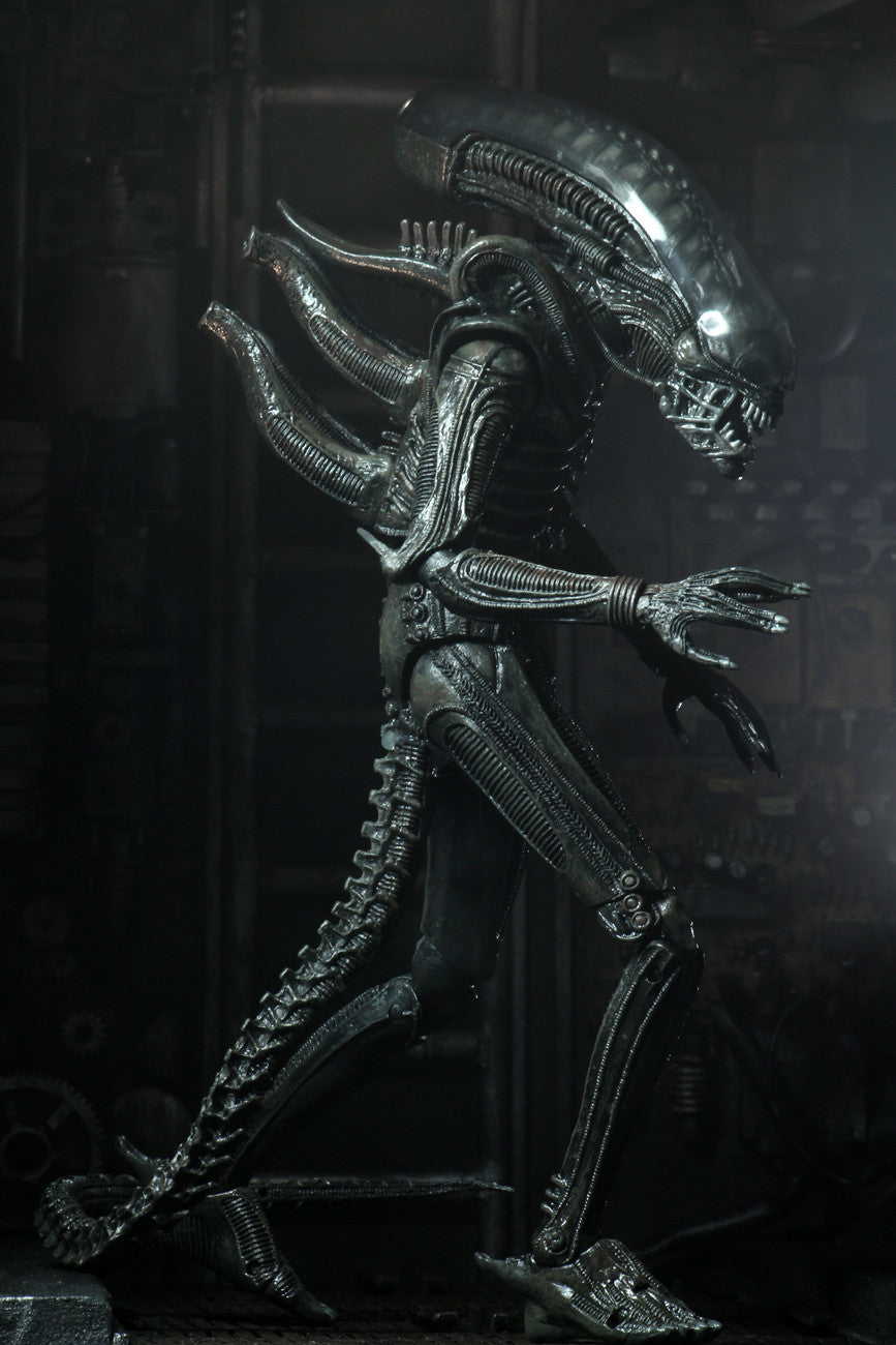 Aliens - 40th Anniversary Big Chap Ultimate 7