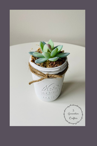 White Linen Single Succulent Mason Jar