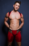 Sport Harness Mesh - 4 Hunks