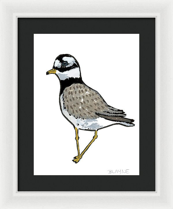 Courage Gull - Framed Print