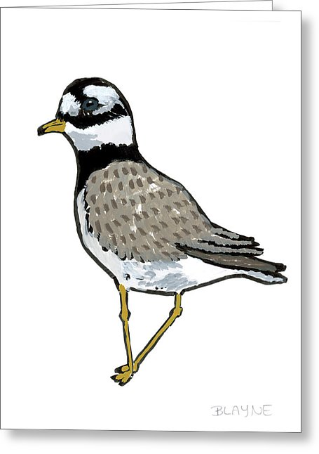 Courage Gull - Greeting Card