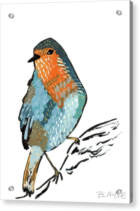 Orange And Blue Bird - Acrylic Print