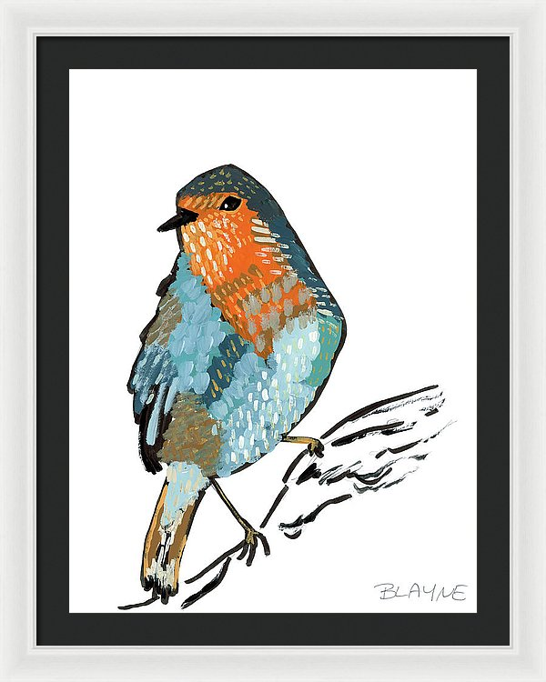 Orange And Blue Bird - Framed Print