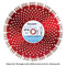 DT15-300/20 Delta Range Concrete Products Diamond Blade